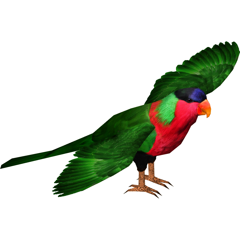 Collared Lory Masterchief123 Zt2 Download Library Wiki