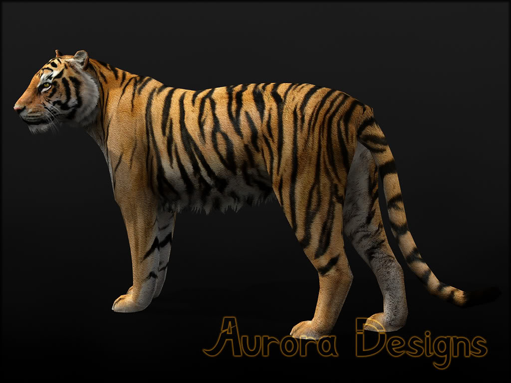 Bengal Tiger Movie Release Trailer - Chitramala