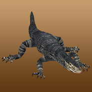 Lace Monitor (Nessich) Render