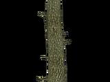 Scratch Post (slice)