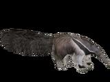 Giant Anteater (Tyranachu & Ulquiorra)