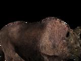 Woolly Rhino (Tyranachu)