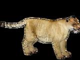 Liger (Ulquiorra)