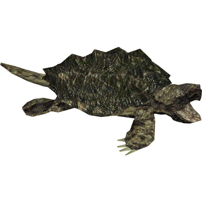 Alligator Snapping Turtle Hispa Designs Zt2 Download