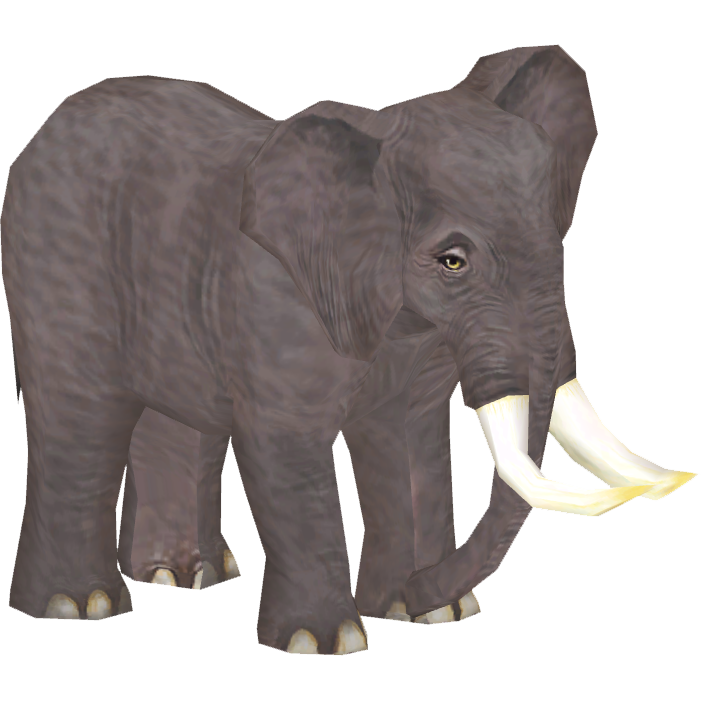 North African Elephant (JVM)   ZT2 Download Library Wiki   FANDOM