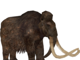 Woolly Mammoth (Zoo Tycoon 2 Thailand)