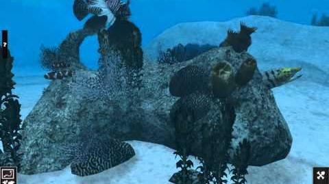 Reef Animated Pack (Zerosvalmont)