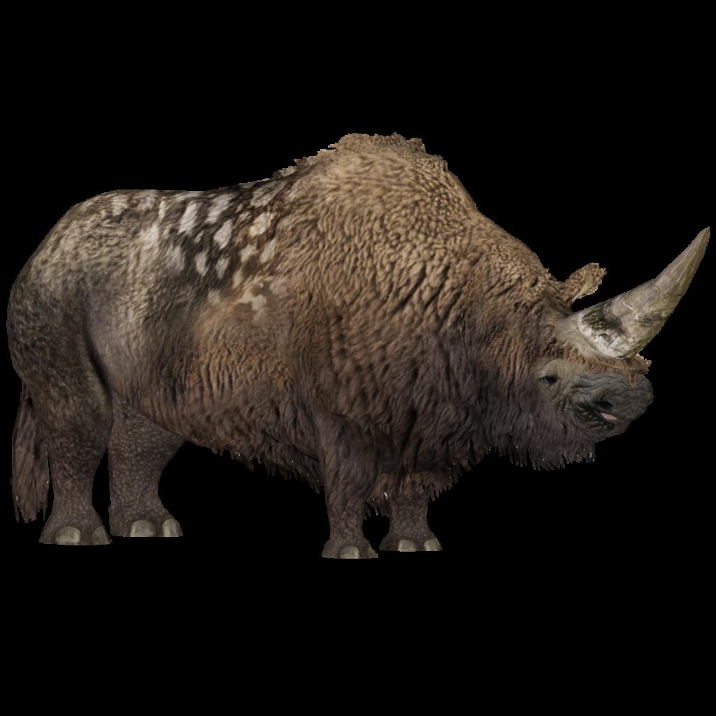 Elasmotherium Eryel Zt2 Download Library Wiki Fandom