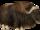 Muskox (DutchDesigns)