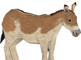 Onager (The Restorers)