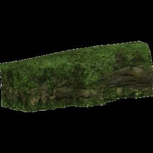 Rocktropicalrainforest slice