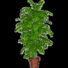 Potted Plant (Dycki1231)-0