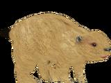 Prairie Dog (The Restorers)