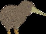 Southern Brown Kiwi (Colonel Swampert)