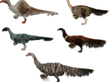 Fluffy Claws (Demon Hunter)