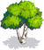 Green Birch-icon