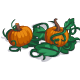 Vine Pumpkin Patch-icon