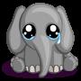 Lost elephant