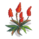 Red Beach Plant-icon