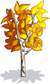 Baby Yellow Birch-icon