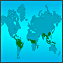 File:Rainforest Worldwide.png