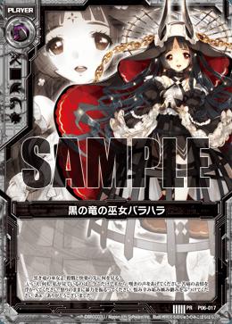 P06-017 Sample