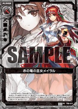 P06-014 Sample