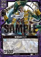 B06-070 Sample