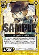 F21-003 Sample