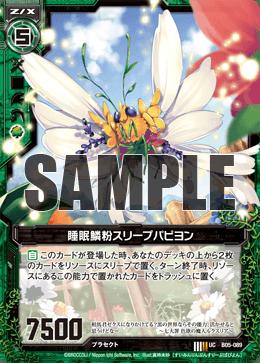 B05-089 Sample