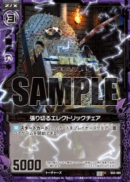 B02-065 Sample