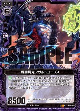 B06-076 Sample
