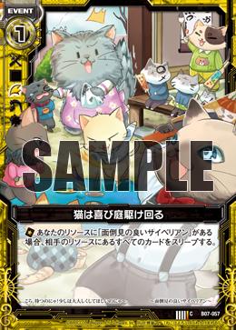 B07-057 Sample