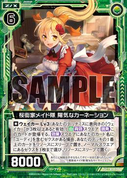 B19-096 Sample