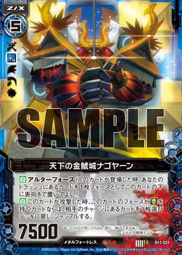 B11-031 Sample