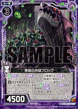 B19-066 Sample
