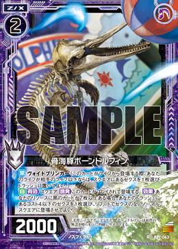 B17-063 Sample
