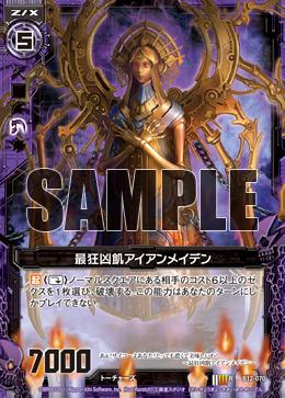 B12-070 Sample