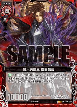B05-016 Sample