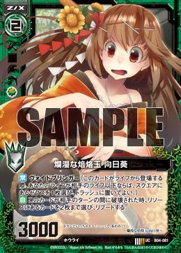 B04-081 Sample