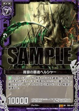 B05-076 Sample