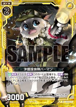 B20-042 Sample