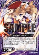 F21-009 Sample