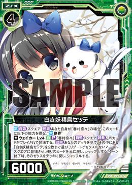 P19-029 Sample