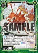 F24-006 Sample