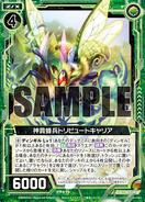 B17-089 Sample