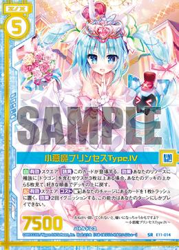 E11-014 Sample