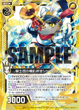 B22-041 Sample