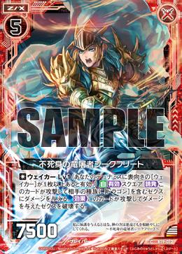 B19-012 Sample