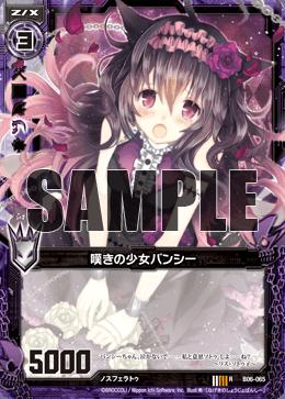 B06-065 Sample